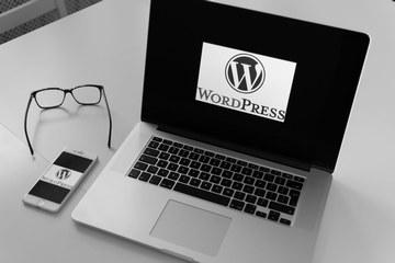 strony na wordpress aplikacja webowa Kraków